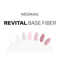 Revital Base Fiber